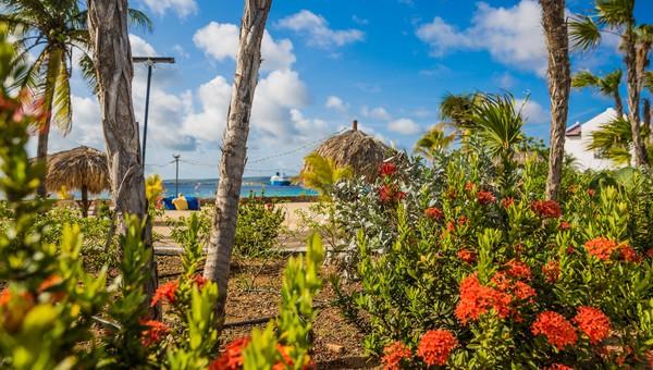 Plaza Beach Resort Bonaire Enjoyment Without Any Limits